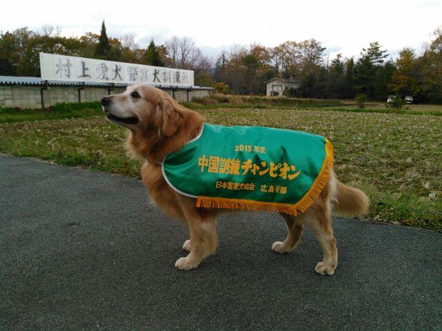 PD広島1