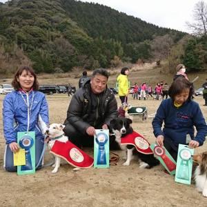 山口県西部ドッグメイトアジリティークラブアジリティー競技会