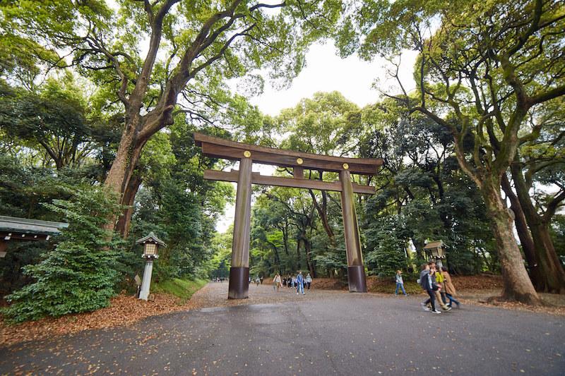 Meiji Shrine Haruki Murakami