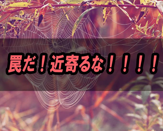 cobweb-397116_1280
