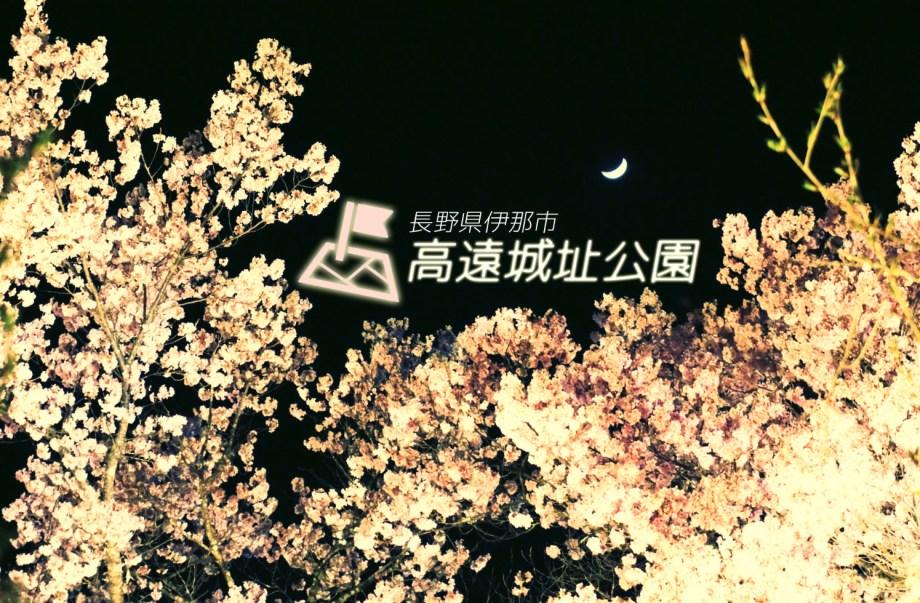 高遠城址公園(クレセントムーンコヒガンザクラ)!!