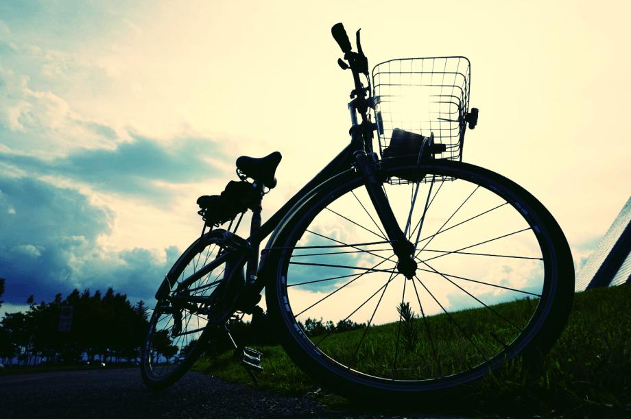 アルサス・ブケパロス・オウガ(ブリヂストンサイクル通学用自転車アルサス改造鬼脚8S型)