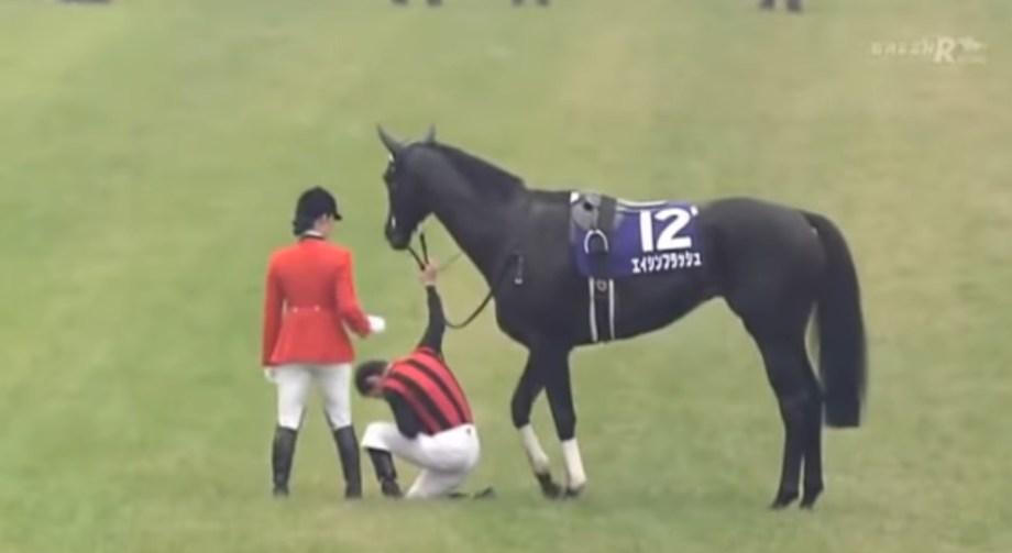 エイシンフラッシュで天皇賞勝利後のウイニングランで両陛下に最敬礼するミルコ・デムーロ騎手。