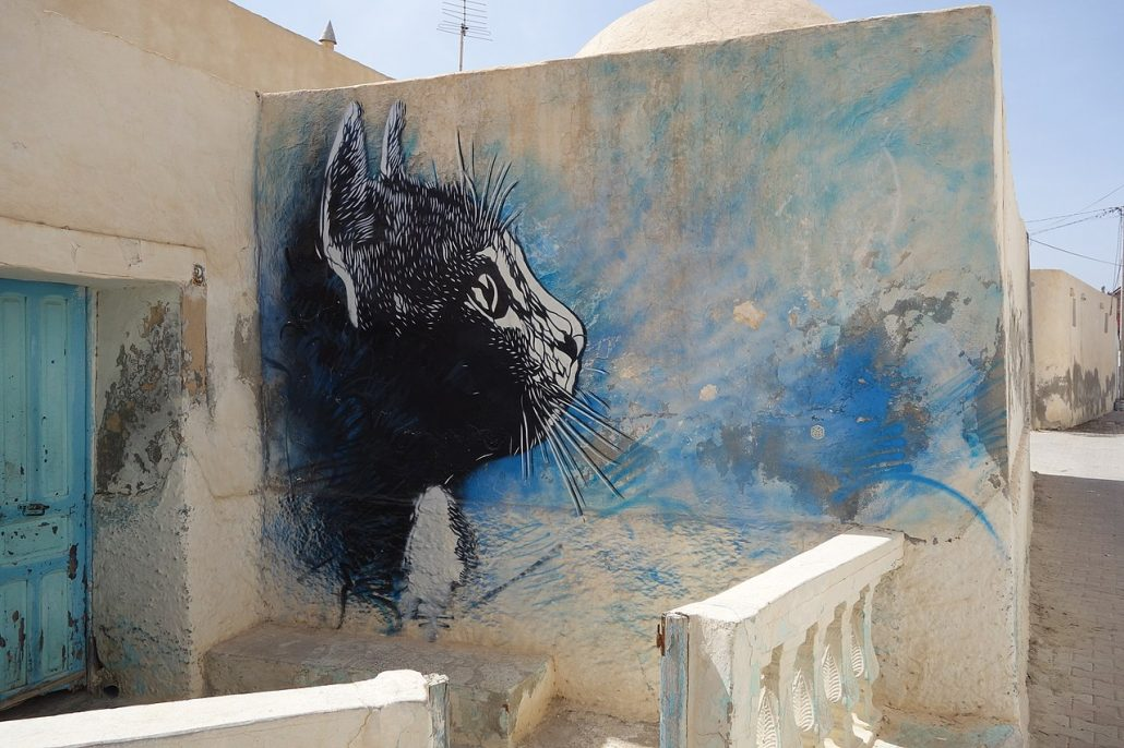 mural by c215 cat in tunisia