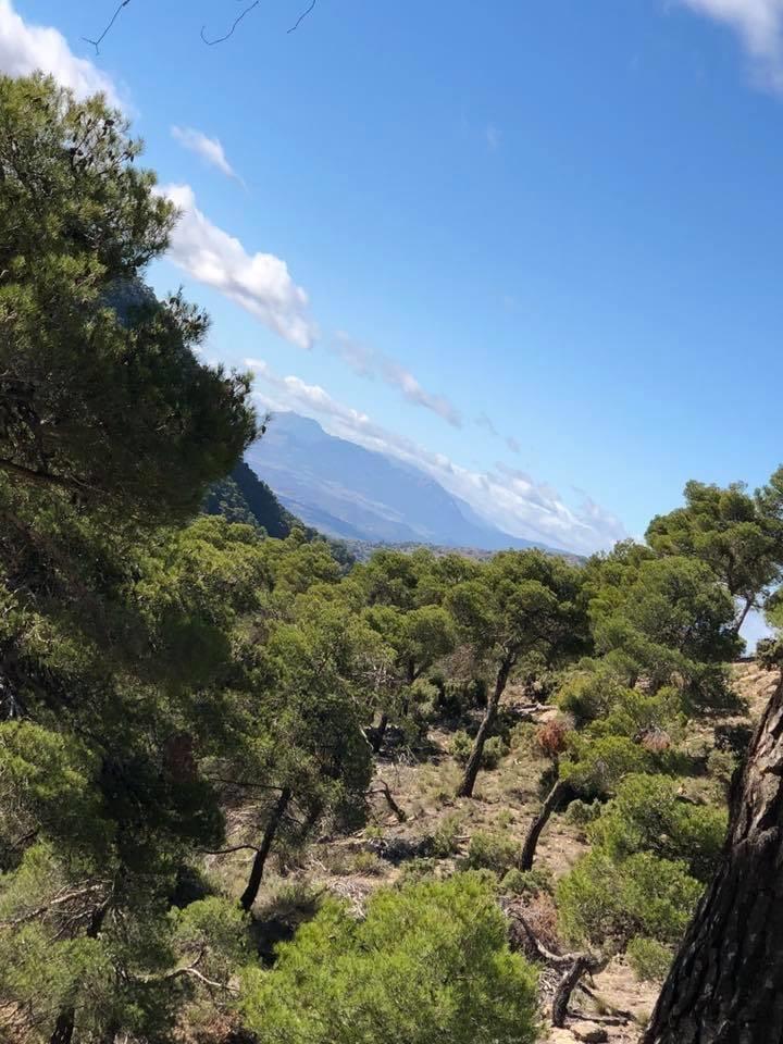 "Murcia Cycling Holidays – ""Murcian Carbon Road Coast and Climb Tour"""