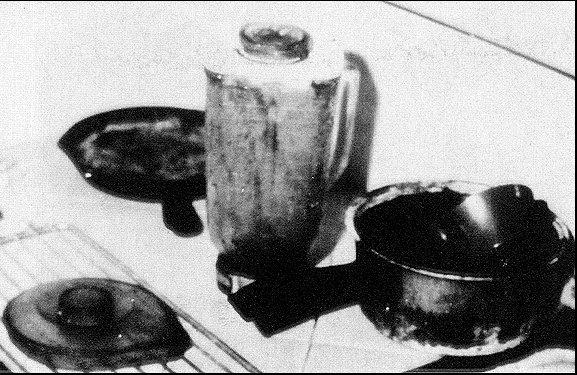 Richard Chase  Photos  Murderpedia the encyclopedia of