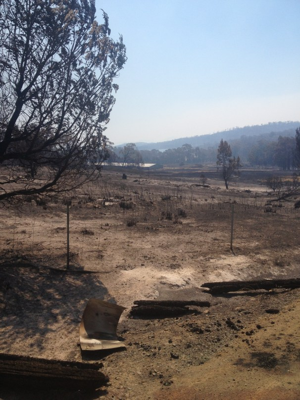The view from the top of our driveway, an indication of the ferocity of the fire front that took our home.