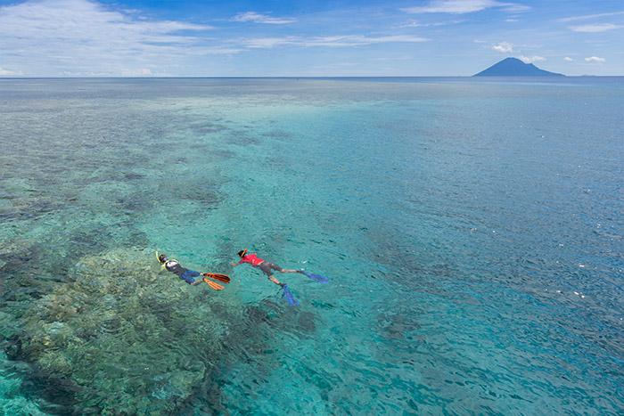 Manado Snorkeling