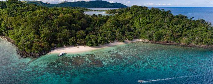 Bangka Island Murex