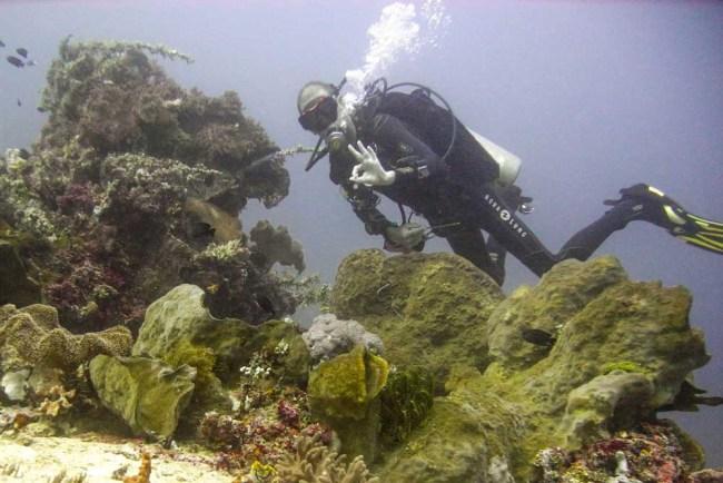 Bangka Manager Olivier Nelis diving