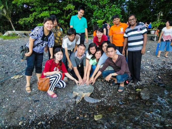 Turtle release from Murex Manado