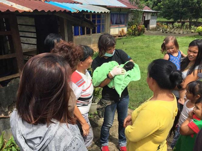 Black Macaque rescue in Manado