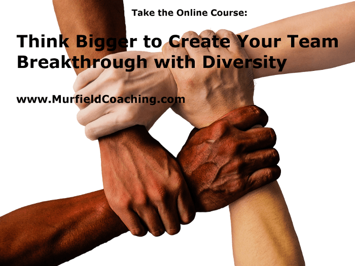 Diversity Course Scaled