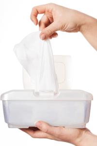 Flushable Wet Wipe