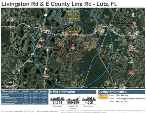 Livingston Rd & E County Line Rd, Lutz FL
