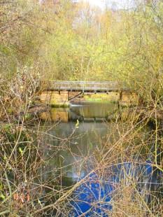Verwilderte Brücke
