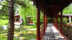 Brücke über den Teich
