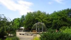 Auch hier: Wasserspiele
