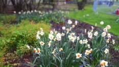 Gärten_der_Welt_6320