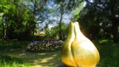 TulipanZauberblüte_6724