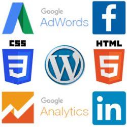 MURRANT MEDIA provides turn-key WordPress websites with Google Adwords and Analytics integration