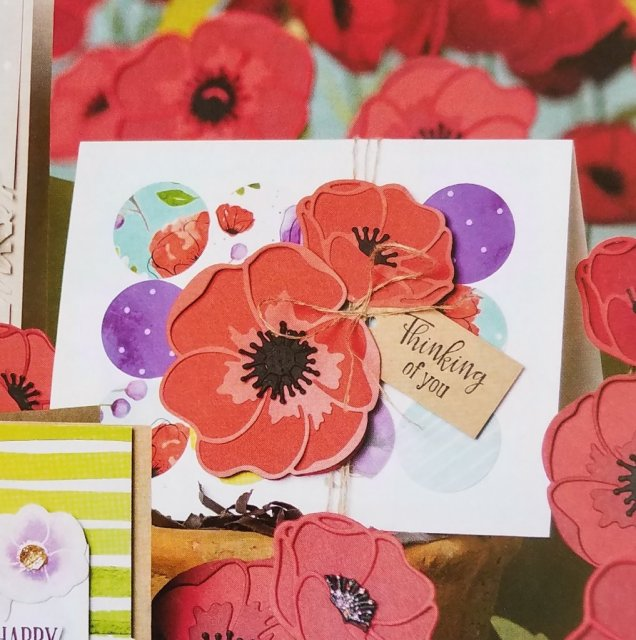 Stampin' Up! Cover Page Sample of Poppy card