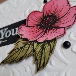 closeup of belended flower