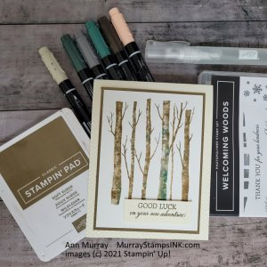 tinted birch trees using markers and mister