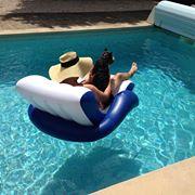 hund i pool 2