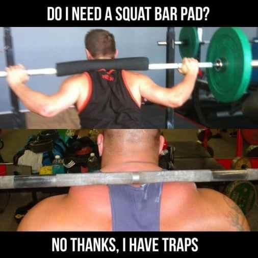 traps meme