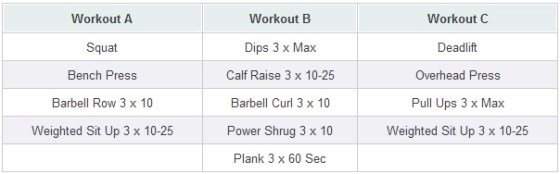 Primal 531 Strength Building Workout - Muscle and Brawn