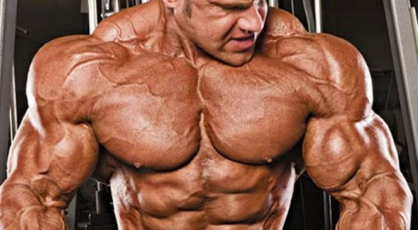 Ultimate German Volume Training Workout Guide
