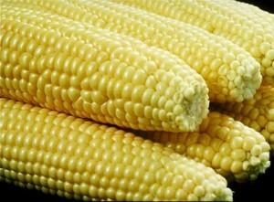 22 corn on the cob