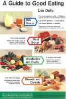 42-4-basic-food-groups