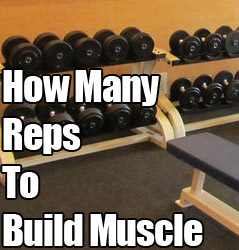 Want to Build Muscle? How many Reps Per Set for Hypertrophy?