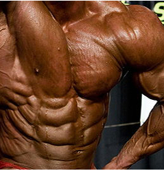 The Power Of The 'Anabolic Window'