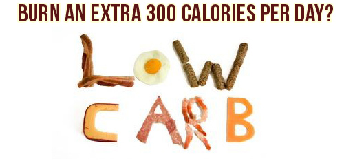 low-carb-metabolic-advantage