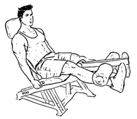 Seated_Machine_Leg_Extensio