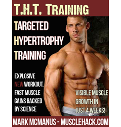 THT Training Version 6 Available For Download
