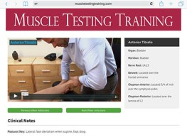 MuscleTestingTraining