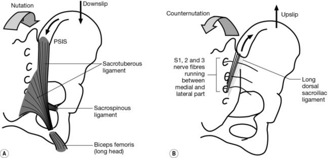 Common presentations and diagnostic techniques