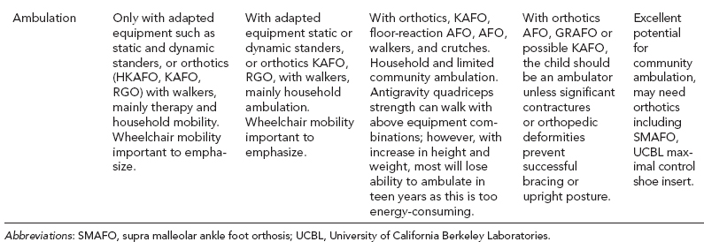 Spina Bifida | Musculoskeletal Key