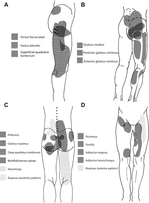 Evaluation and Management of Hip and Pelvis Injuries