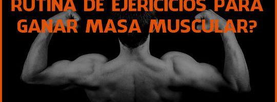 Cómo programar tu rutina de ejercicios para ganar masa muscular