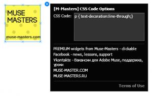 Adobe Muse виджет для вставки css