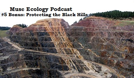 #5 Bonus: Protecting the Black Hills