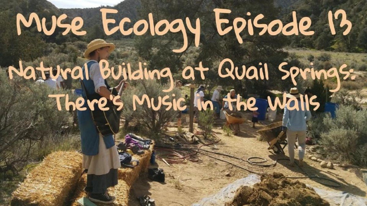 #13 Natural Building at Quail Springs, There's Music in the Walls