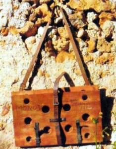 Rahla 211 Monod Herbier mur