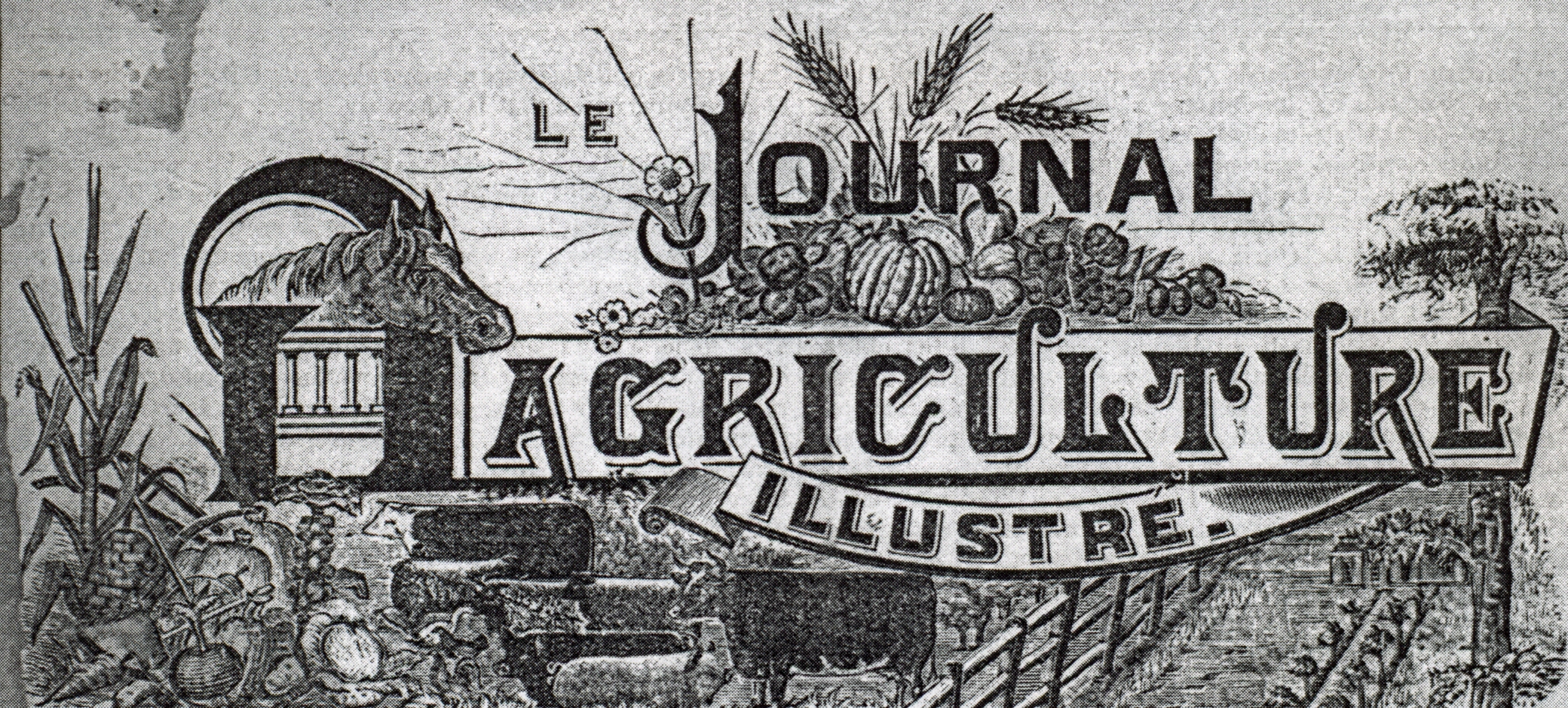 Journal Agriculture illustré