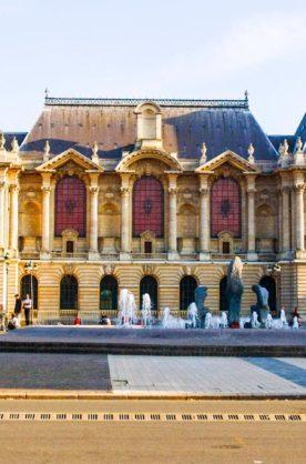 Palais Des Beaux-arts Lille : palais, beaux-arts, lille, Lille, Palace, Museomix